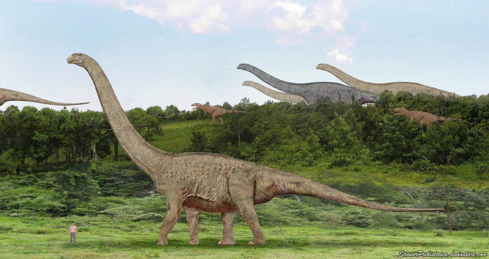 Высокие динозавры картинки